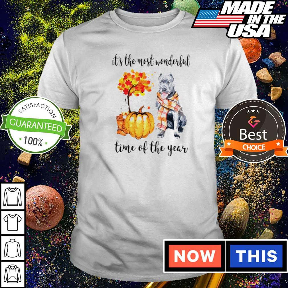 Pitbull Fall pumpkin it's the most wonderful time of the year shirt